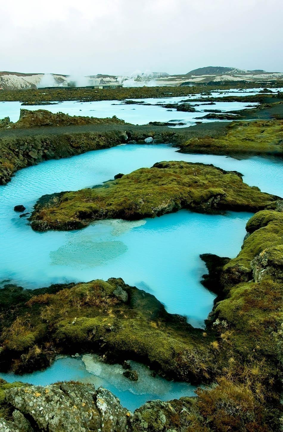 The blue water between the lava stones covered with moss just outside the Blue Lagoon resort of Iceland | Iceland Travel Guide