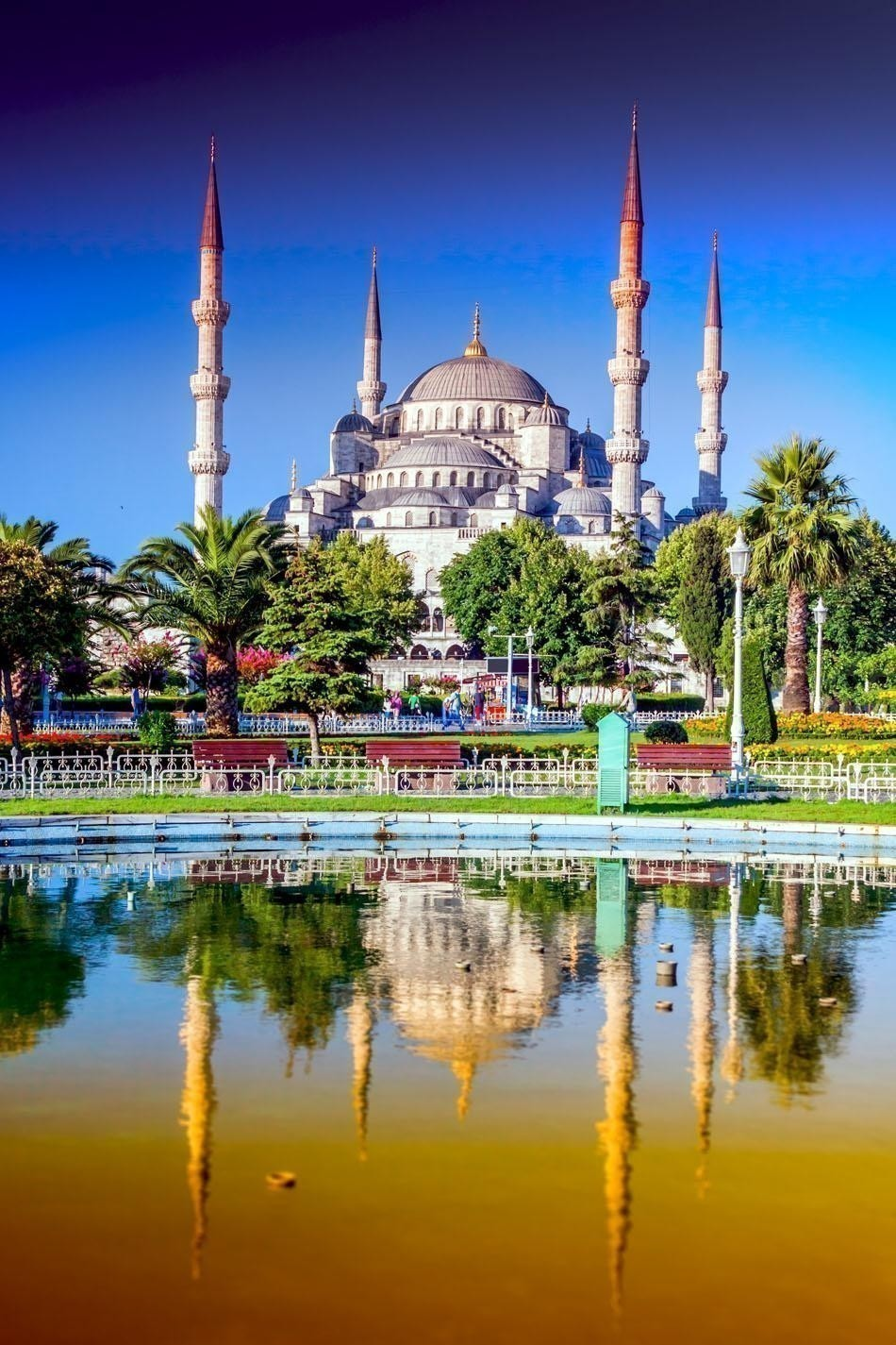 Beautiful View of Blue Mosque in Istanbul, Turkey | Turkey Travel Guide