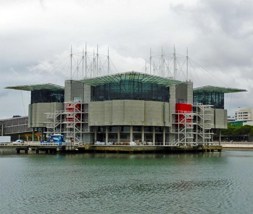 Oceanario de Lisboa, Lisbon | 11 Must-See attractions in Portugal