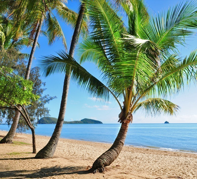 Palm Cove Beach with Double Island in background, Australia | Top 10 Australian Beaches That You Must Include in Your Bucket List