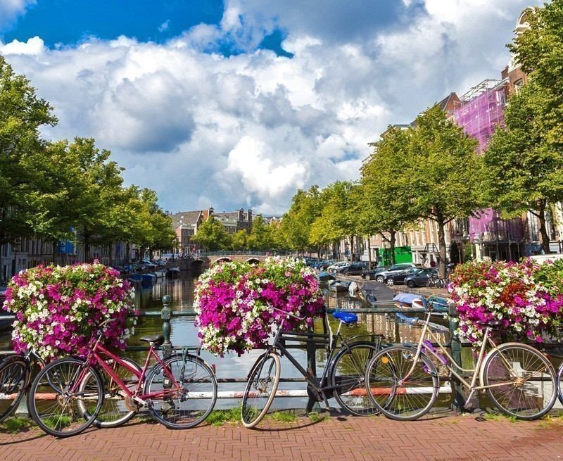 French fries and Bicycles in Amsterdam, Netherlands | TOP 10 Kid-Friendly Destinations Around the World